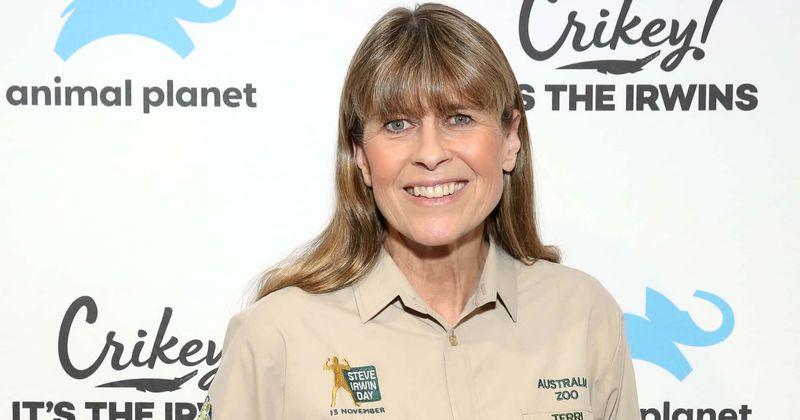 Qual é o patrimônio líquido de Terri Irwin? A esposa de Steve Irwin é proprietária da enorme fortuna do Zoológico da Austrália
