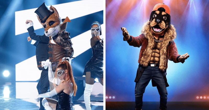 Semifinais da 2ª temporada de 'The Masked Singer': os fãs acham que o Rottweiler é Chris Daughtry e a Fox é Jamie Foxx ou Wayne Brady