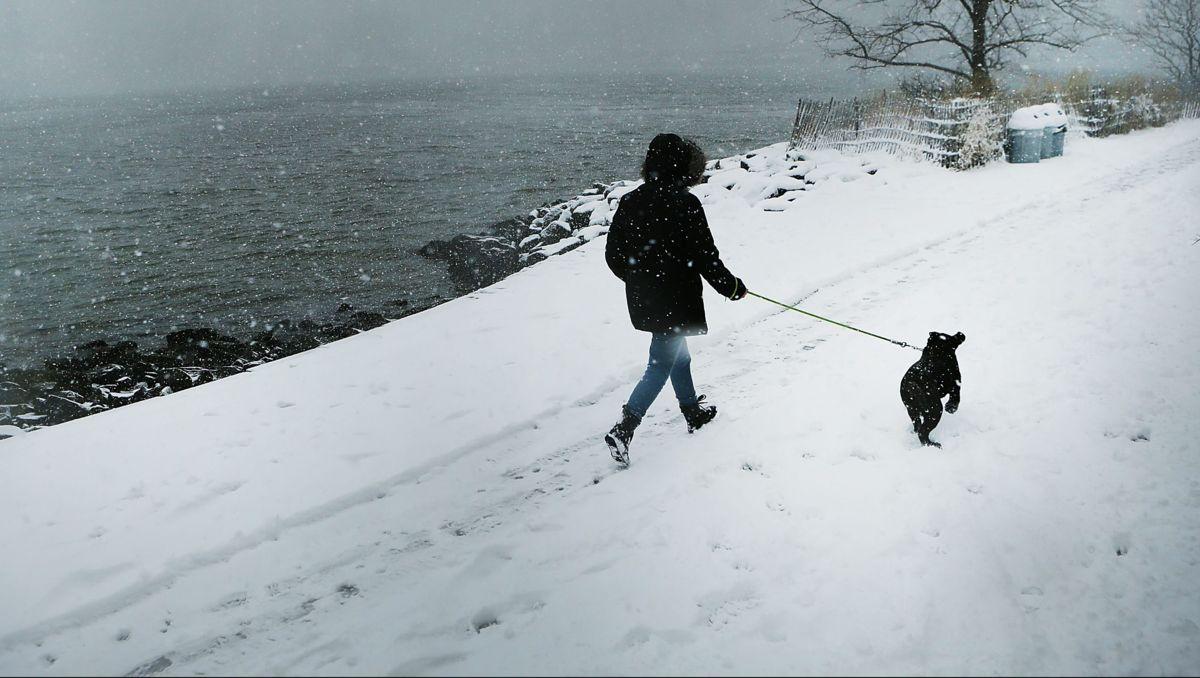 Washington, DC Ukupni snježni nanosi za zimsku oluju Stella: Koliko inča snijega?