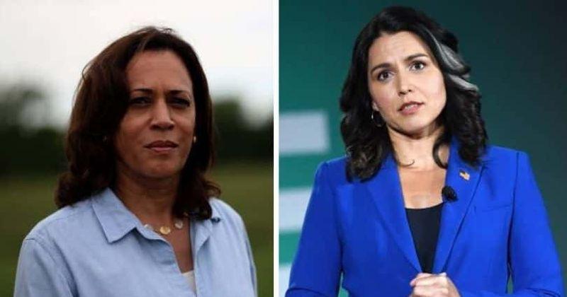 Onde está Tulsi Gabbard agora? Foi assim que ela 'destruiu' Kamala Harris durante o debate presidencial democrata de 2019