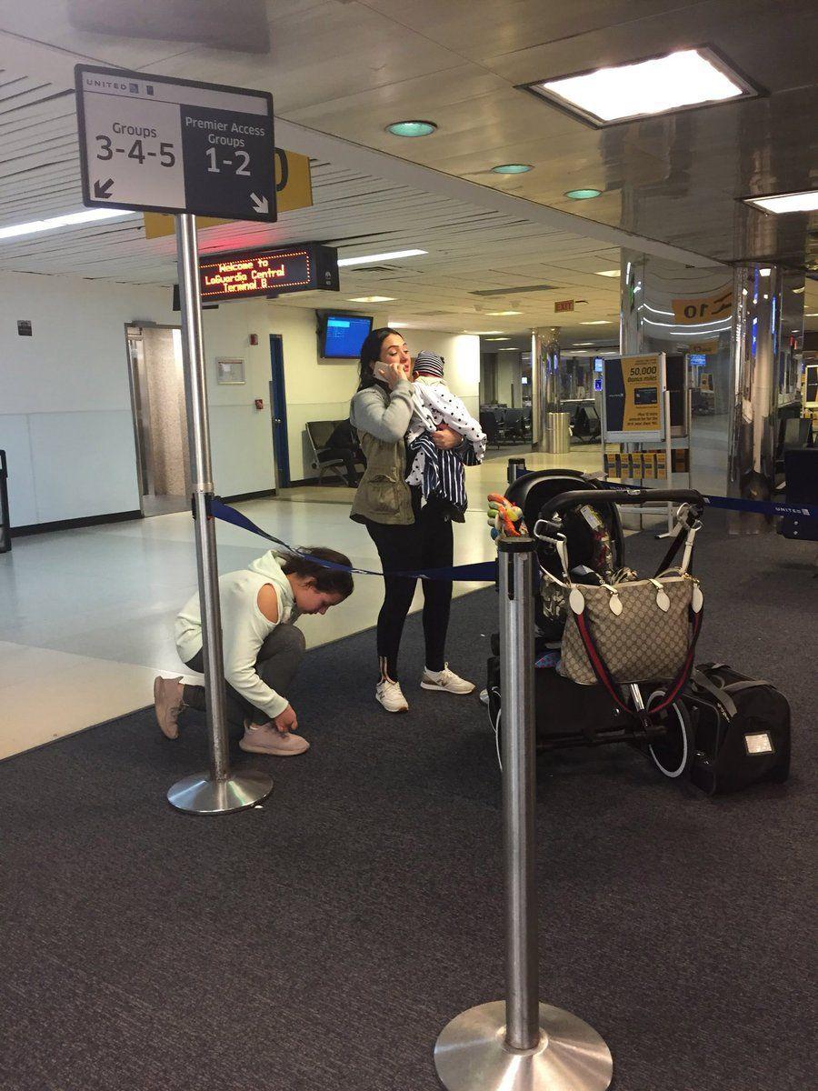 Cachorro morre durante voo da United: 5 fatos rápidos que você precisa saber